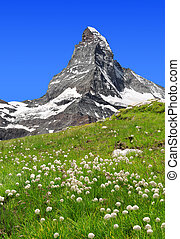 Views of the Matterhorn - Swiss Alps