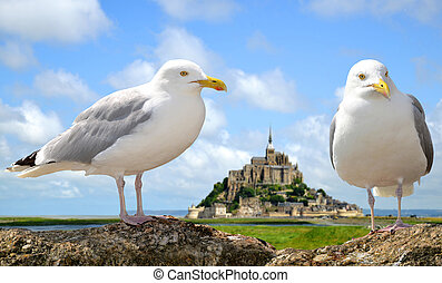 Seagulls in the background Mont Saint Michele, France