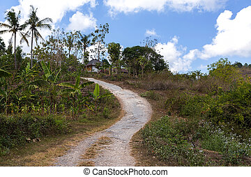 Roand on Nusa Penida Island - small narrow roand on Nusa...
