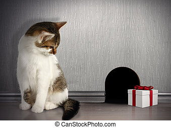 Funny trap concept, cat with gift near a mouse hole - trap...