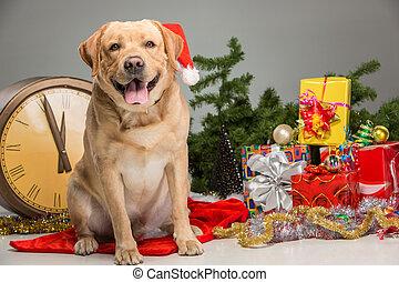 Labrador with Santa Hat. New Year's garland - Labrador...