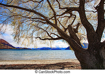 wanaka lake south island newzealand - wanaka lake south...