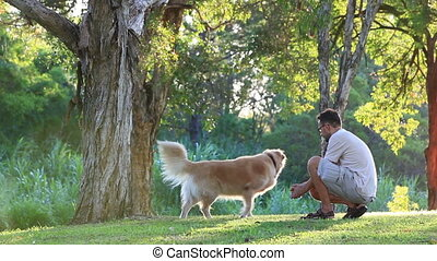 Dog and his owner doing shake - Dog and his owner in the...