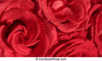 Beautiful bouquet of red roses spinning rapidly. -...