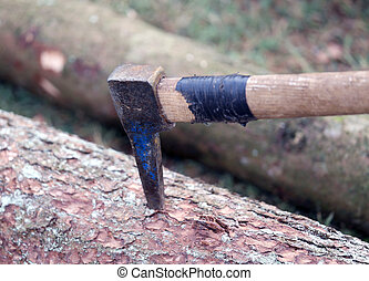 large Harpoon used by lumberjack to drag tree trunks -...
