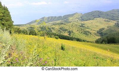 Beautiful panorama of Altai Mountains in resort Belokurikha...