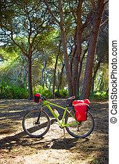 ciclismo, turismo, bicicleta, en, españa, con,...