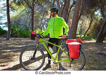 MTB, Biker, bicicleta, Viajar, en, Un, pino, bosque,