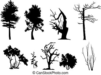 Tree vector silhouettes - Set of trees silhouette with and...