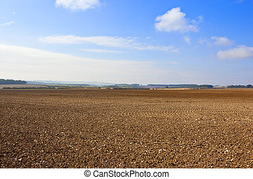 fall agriculture - cultivated chalky soil in the yorkshire...