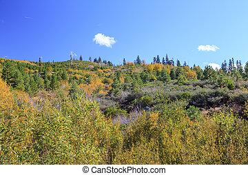 Sierra Nevada - Landscape in the Californian Sierra Nevada