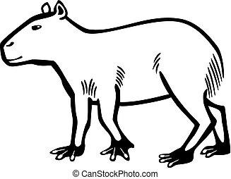 Capybara - vector line drawing of a capybara, the largest...