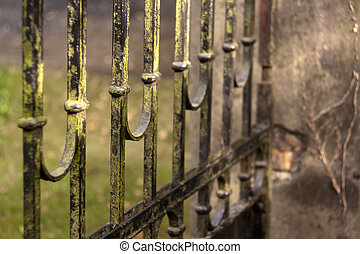 Iron gate - Details of an old mossy iron gate