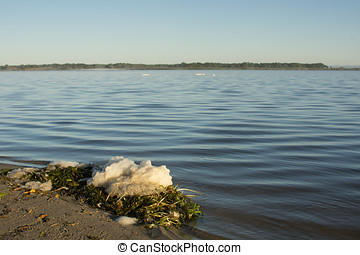 Pile of Foam Overlooking Lake - A clump of foam sits on a...