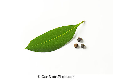 bay leaf - fresh bay leaf and peppercorns on white...