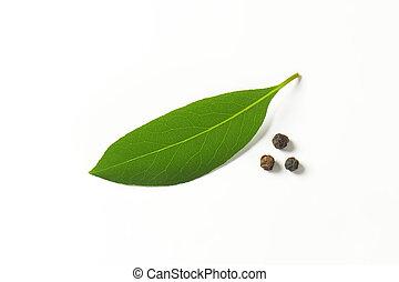 bay leaf - fresh bay leaf and peppercorns on white...