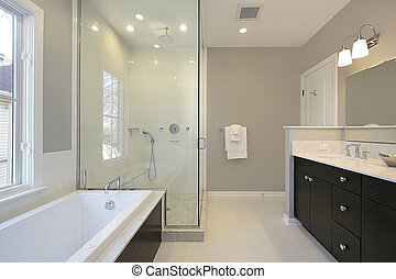 Master bath with glass shower - Master bath in new...