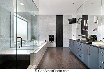 Sleek master bath in luxury home with glass shower