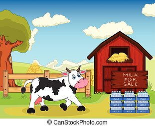 Milk for sale and cow at the farm