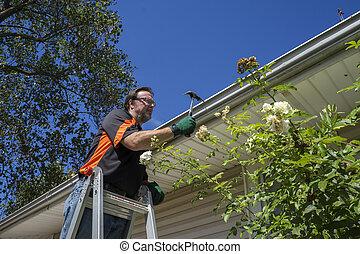 Worker Hammering Gutter Spike In - Worker hammering gutter...