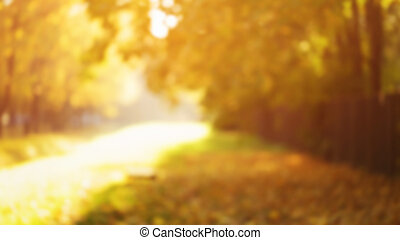 natural blur bokeh background of autumn park, good for...
