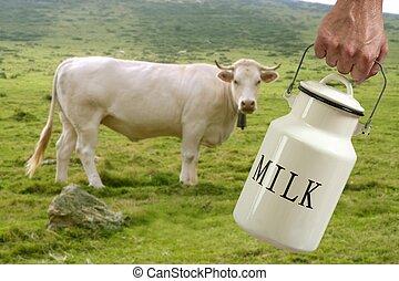 leite, pote, agricultor, mão, vaca, prado