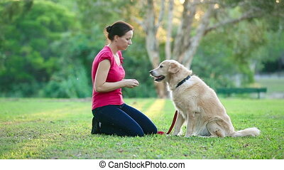 Dog and his female owner in park