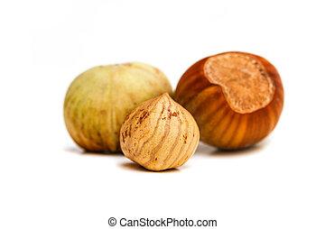 Hazelnut kernel isolated - Hazelnut and kernel isolated on...