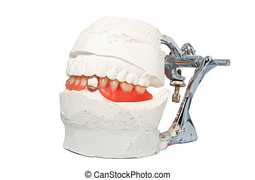 dental prosthesis - Dental Lab Articulator with dental...