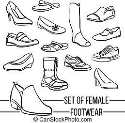Set of vector drawn women's footwear lines