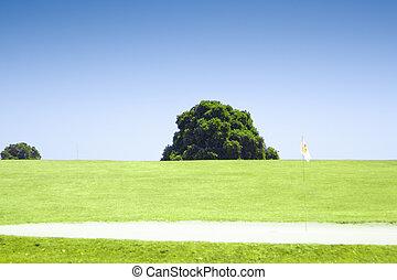 站立, 樹, 單獨, 橡木, 領域