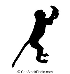silhouette of a monkey with a banana