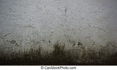 Grungy Concrete Wall Background - An old grungy mouldy...