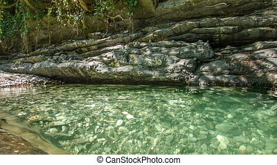 Rocks Lake - Rocks lake in forest with clear water 2