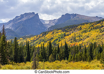Rocky Mountain National Park - Autumn Leaves in Rocky...