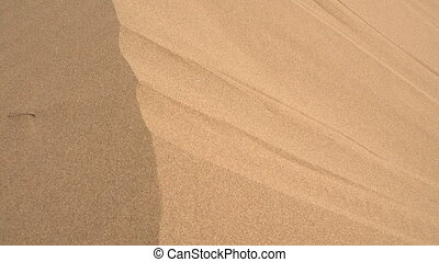 Stream Flows from the Sand Dune