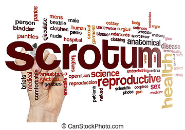 Scrotum word cloud concept - Scrotum word cloud
