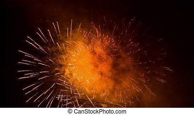 Brightly Colorful Fireworks Shining In The Night Sky