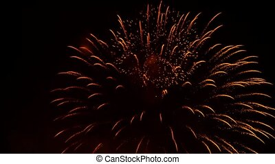 Night Golden Rain Pyrotechnic Fireworks On Black Background