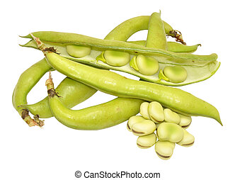 Raw Uncooked Fresh Broad Beans - Group of fresh broad beans...