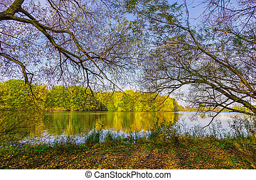 Autumn Landscape with Background Colourful Trees, Lake and...