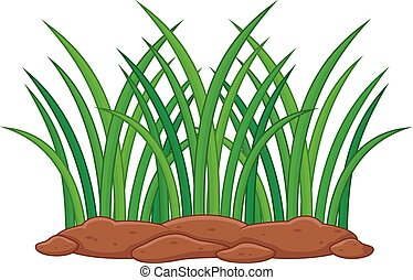 Green plant on a white background - vector illustration of...