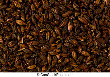 Chocolate Brewers Malt - Background texture of chocolate...