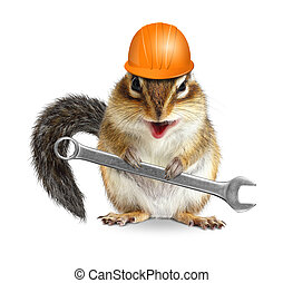 Funny handyman chipmunk worker with helmet and wrench isolated on white background
