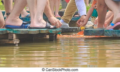 tourists feet on planked footways hands feeding fish in lake...