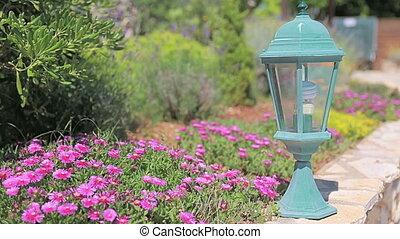 Garden Lamp - A small lamp in the Mediterranean garden...
