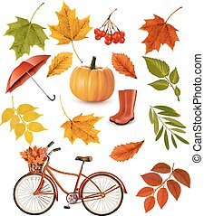 Set of colorful autumn leaves and objects Vector...