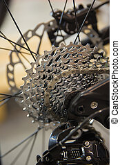 Mountain bike cassette and chain of the rear wheel