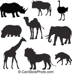 Wild African Animals Black