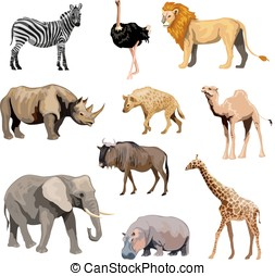 Wild African Animals Set - Wild african animals set with...